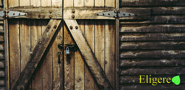 Barn Door Design