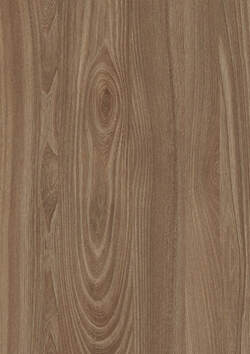 NWE615 BROWN TOSSINI ELM