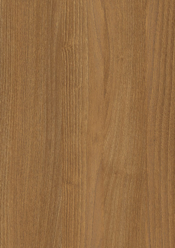 WSE916 NATURAL BROWN BRANSON ROBINIA (NEW)